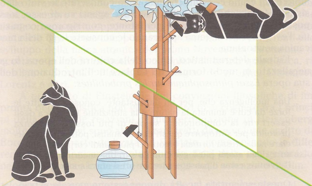 paradosso del gatto di Schrödinger[5]